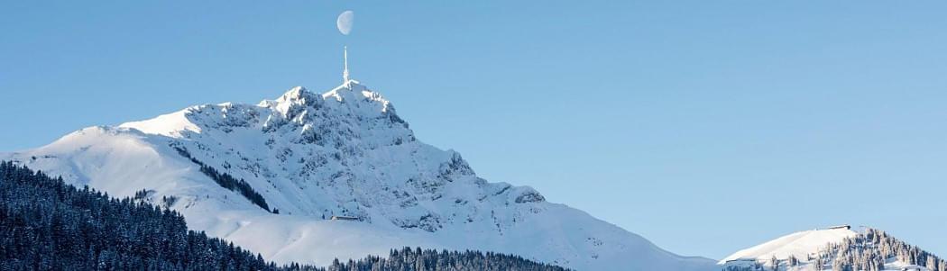 Rodeln & Pferdeschlitten - Dolomit Family Hotels in Rasen Antholz